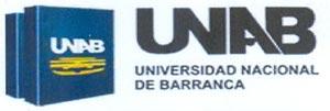 DOCUMENTO DE ENTENDIMIENTO Y COLABORACI�N ENTRE EL INSTITUTO VASCO DE DERECHO PROCESAL Y LA UNIVERSIDAD NACIONAL DE BARRANCA (PER�)